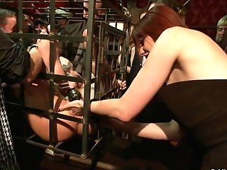Blessed Bday Princess Donna Bow To The Cattle Prod (part One) - Publicdisgrace