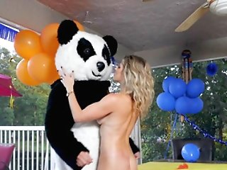 Soiree Cougar Gets The Large Panda Grizzly's Dick Inwards Her Culo